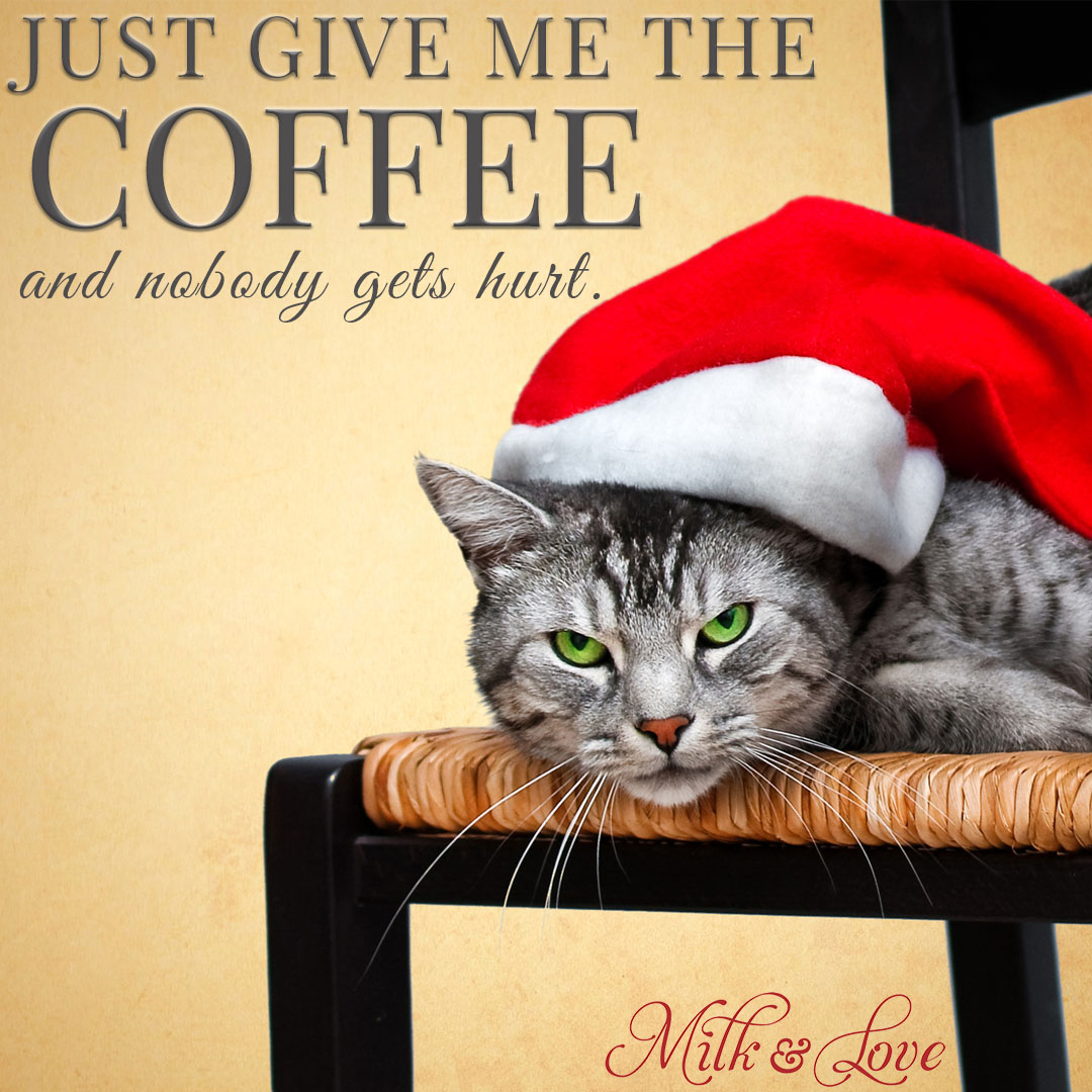 Funniest Christmas Memes.7 Funny Christmas Memes To Make You Laugh Milk And Love
