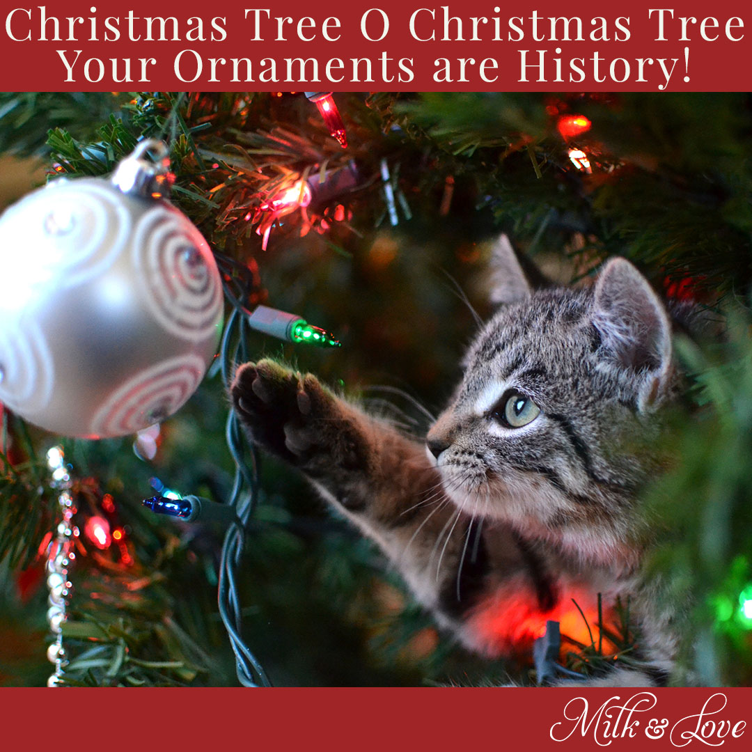 christmas meme 2017 animals and ornaments